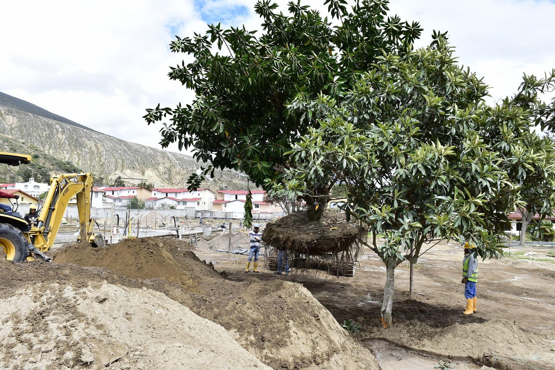 PROAÑO | PROAÑO CREA Y POTENCIALIZA ZONAS VERDES EN LA CAPITAL ECUATORIANA