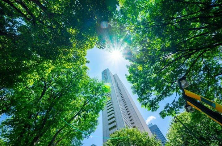 El Covid-19 acelera la necesidad de optar por modelos de negocio sostenibles