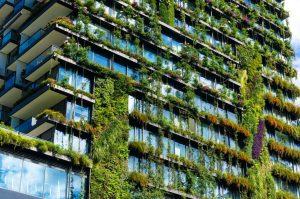 ¿Cómo identificar una vivienda verde?