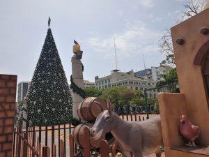 El próximo jueves 3 de diciembre se encenderá el Árbol de la Ciudad en el Malecón 2000