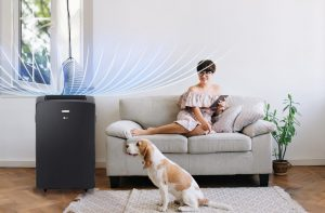 LG trae la frescura del aire a donde quiera que vayas con sus nuevos aires acondicionados portátiles