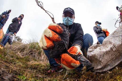 Ninacuro realiza una conmemoración medio ambiental a los fallecidos por la pandemia