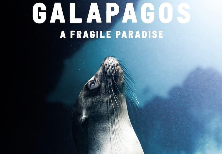 Corona Studios lanza documental sobre las Islas Galápagos durante el mes de los océanos