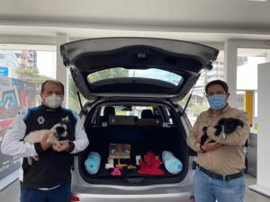 """Renault realizó el """"Dog Day"""" convirtiendo su agencia Shyris en centro de adopción canino"""